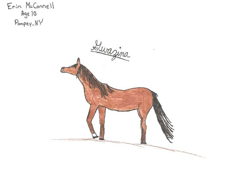 Submitted by Erin McConnell, Age 10. Arabian Mare
