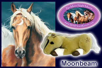 Moonbeam - 'A Light of Courage'